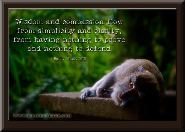 Wisdom and Compassion