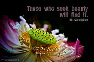 Those who seek beauty will find it