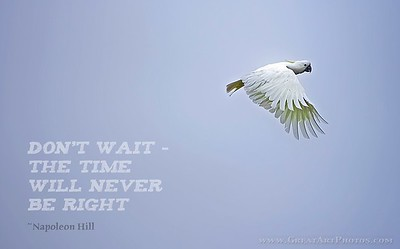 Don't wait - the time will never be right