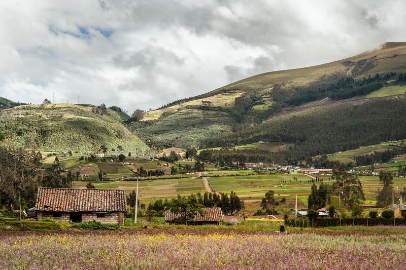 Andes Highlands, Ecuador