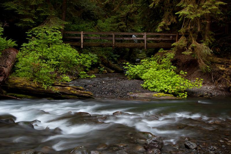 Marymere Falls, Olympic Pennisula, Washington