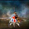 Portrait of a Thunderbird