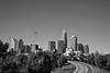 Charlotte skyline in black & white