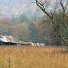 Cades Cove barn along Sparks Lane in fall. The barn has collapsed and the tree was struck by lightning and is no longer there.