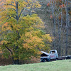 Fall Wrecked Truck. The truck has been removed but the tree is still there.