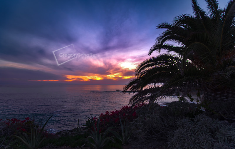Laguna Beach by Gregory Lee Schaffer Photography Color galore this evening at Treasure Island Park, Laguna Beach, CA