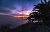 Laguna Beach by Gregory Lee Schaffer Photography Color galore this evening at Treasure Island Park, Laguna Beach, CA