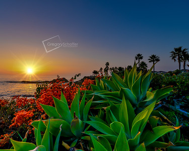 Laguna Beach by Gregory Lee Schaffer Photography