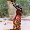 For centuries women in India have threshed grain by hand.
