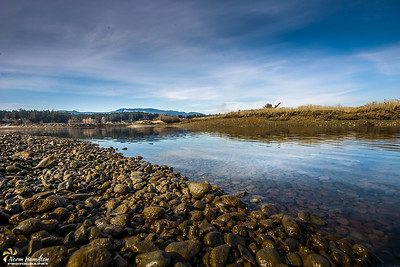 A Quiet Morning - Cowichan River Estuary