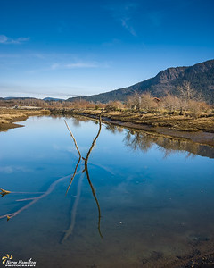 Blue morning at the Cowichan River Estuary