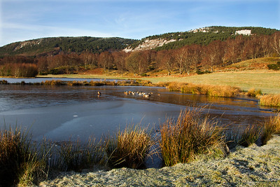 Duck Pond at Ballater.