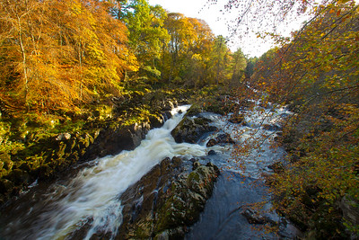 Autumnal colours at the River Feugh near Banchory.