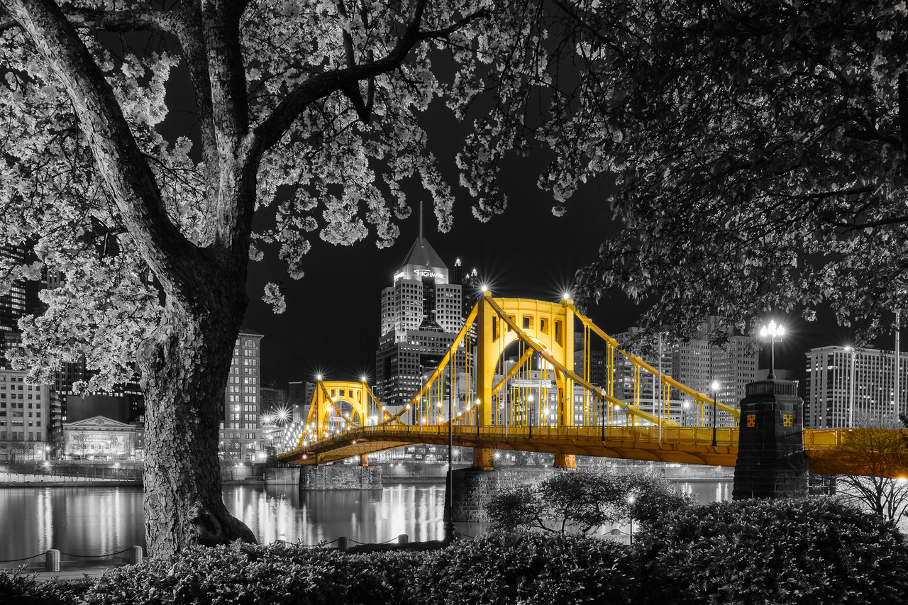 """""""Sprung Re-Envisioned (Selective Color)"""" - Pittsburgh, North Shore   Recommended Print sizes*:  4x6  
