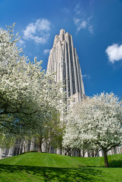 """Commencement"" - Oakland, University of Pittsburgh   Recommended Print sizes*:  4x6  