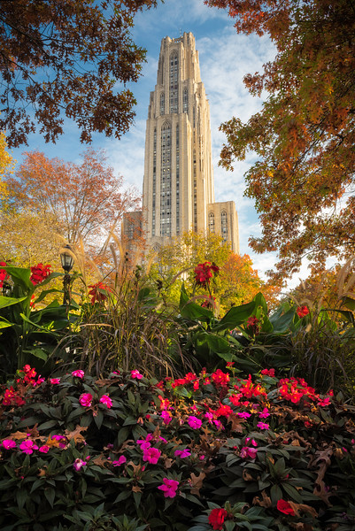 """Cathy's Flower Garden"" - University of Pittsburgh   Recommended Print sizes*:  4x6  