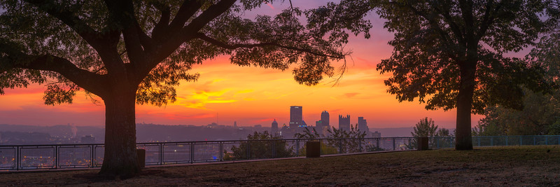 """Through the Eyes of the Trees"" - Pittsburgh, West End   Recommended Print sizes*:  5x15  