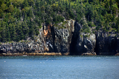 Acadia National Park | Mount Desert Island, Maine | US - 0049