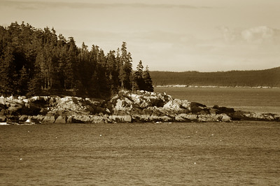 Acadia National Park | Mount Desert Island, Maine | US - 0146