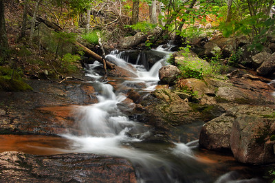 Acadia National Park   Mount Desert Island, Maine   US - 0160