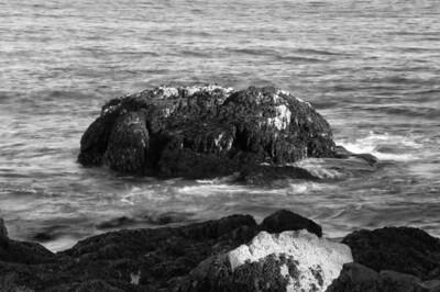 Acadia National Park | Mount Desert Island, Maine | US - 0142