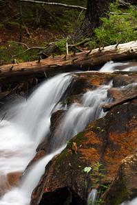 Acadia National Park | Mount Desert Island, Maine | US - 0121