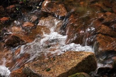 Acadia National Park | Mount Desert Island, Maine | US - 0114