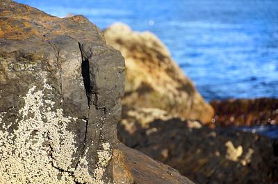 Acadia National Park | Mount Desert Island, Maine | US - 0139