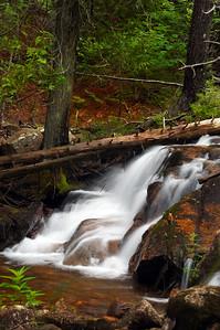 Acadia National Park | Mount Desert Island, Maine | US - 0122