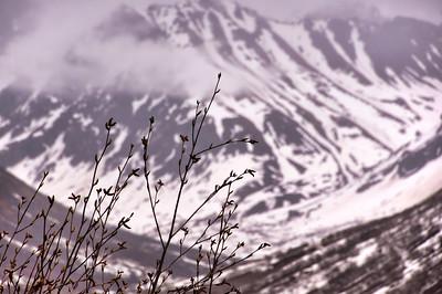 Hatcher Pass | Hatcher Pass, Alaska