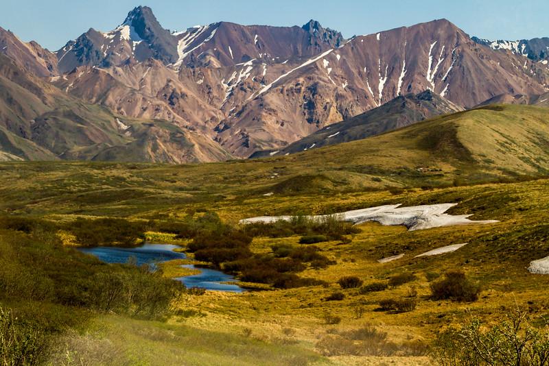 Denali National Park.