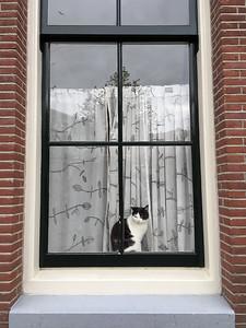 Amsterdam 2017-58