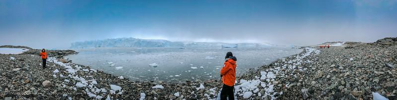 Antarctic-16