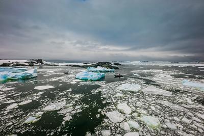 Antarctic-20