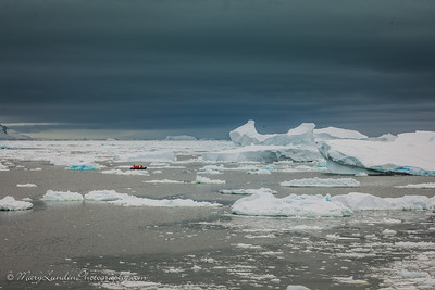 Antarctic-21