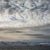 Upper Gerlache Strat 1648 Antarctica