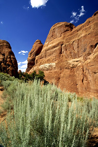 Arches National Park | Utah | US - 0010