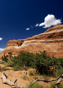 Arches National Park | Utah | US - 0001