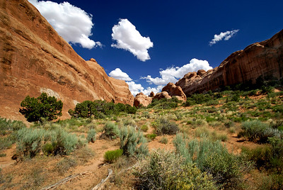 Arches National Park | Utah | US - 0009