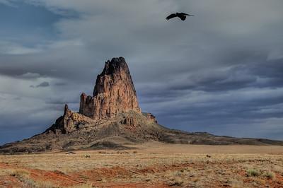 Capitan, Kayenta, AZ