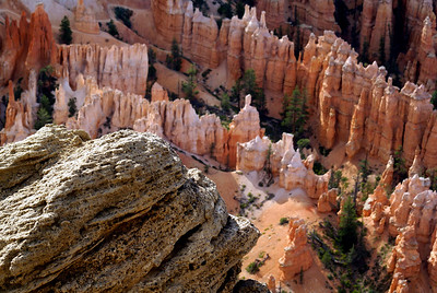 Bryce Canyon National Park | Utah | US - 0014
