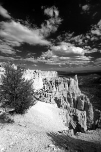 Bryce Canyon National Park | Utah | US - 0007