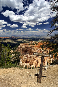 Bryce Canyon National Park | Utah | US - 0004