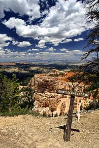 Bryce Canyon National Park | Utah | US - 0004