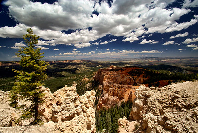 Bryce Canyon National Park | Utah | US - 0001