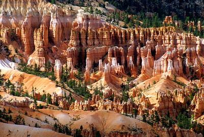 Bryce Canyon National Park | Utah | US - 0010
