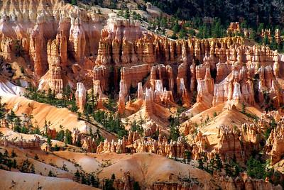 Bryce Canyon National Park | Utah | US - 0010
