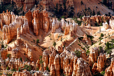 Bryce Canyon National Park | Utah | US - 0008