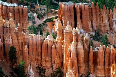 Bryce Canyon National Park | Utah | US - 0011