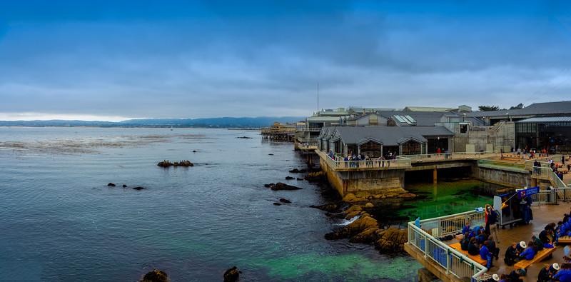 Aquarium at Monterey